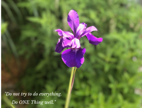 Do not try to do everything. Do one thing well.